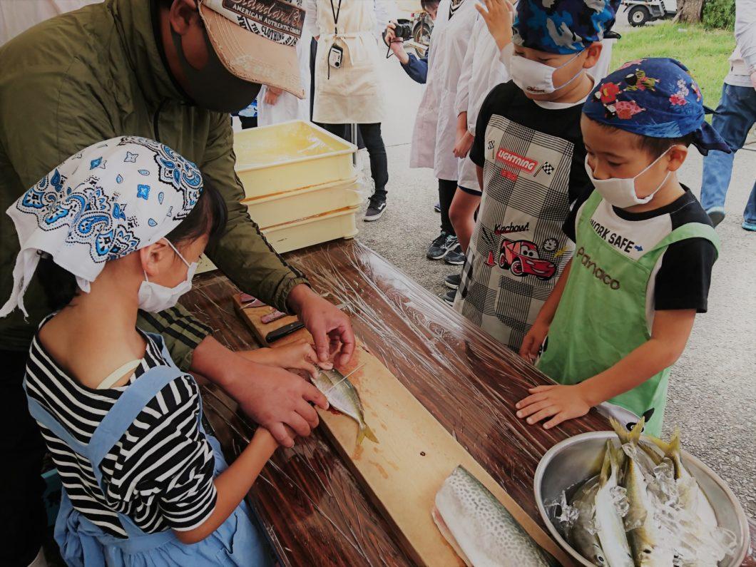 魚捌き体験中の菅島小学校児童