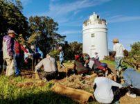 菅島灯台に水仙の花壇を作る様子